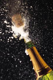 champaign