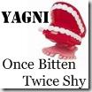 yagni_once_bitten_twice_shy